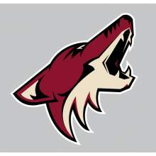 NHL ARIZONA COYOTES 2014 001