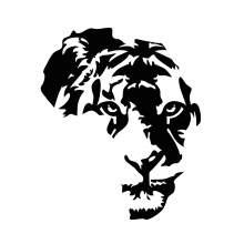 AFRIQUE LION 001